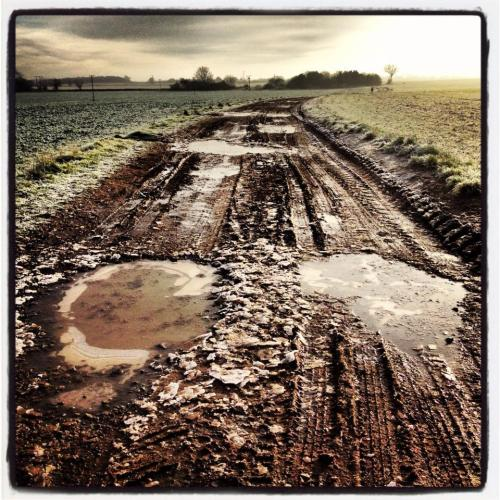 Muddy track frozen