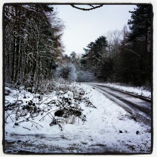 The wolds in snow by Hannah Coleman